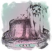 Club Español del Yorkshire Terrier C.E.Y.T.