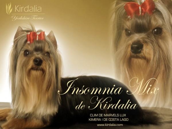 Insomnia Mix de Kirdalia