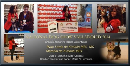 Exposición Nacional Canina Valladolid 2014