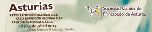 Exposicion nacional Canina principado de Asturias