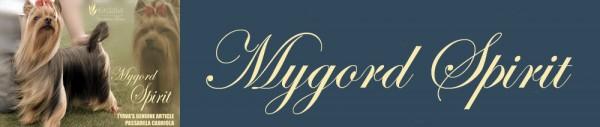 Mygord Spirit