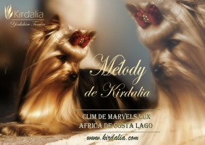 Mélody de Kirdalia
