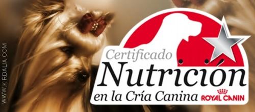 Certificado de nutricion en la cría canina