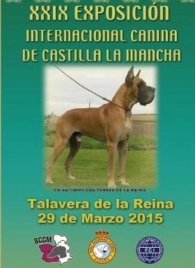 Exposición Internacional Canina Talavera 2015