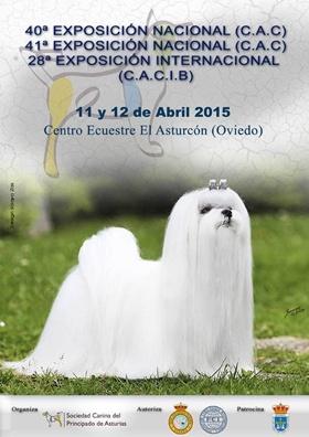 Exposición Nacional Internacional Asturias 2015