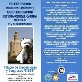 Exposición Nacional Internacional Sevilla 2015