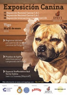 Exposición Nac Int Canina Vigo 2016