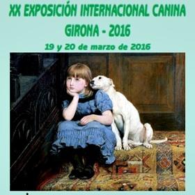 EXPOSICIÓN INTERNACIONAL CANINA GIRONA 2016