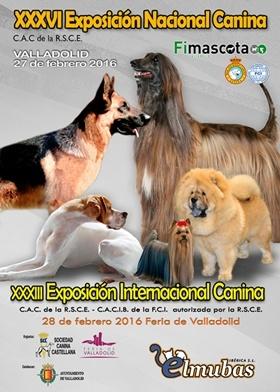 Exposición Nacional Internacional Canina Valladolid 2016