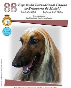 Exposición Internacional Canina de Primavera Madrid 2016