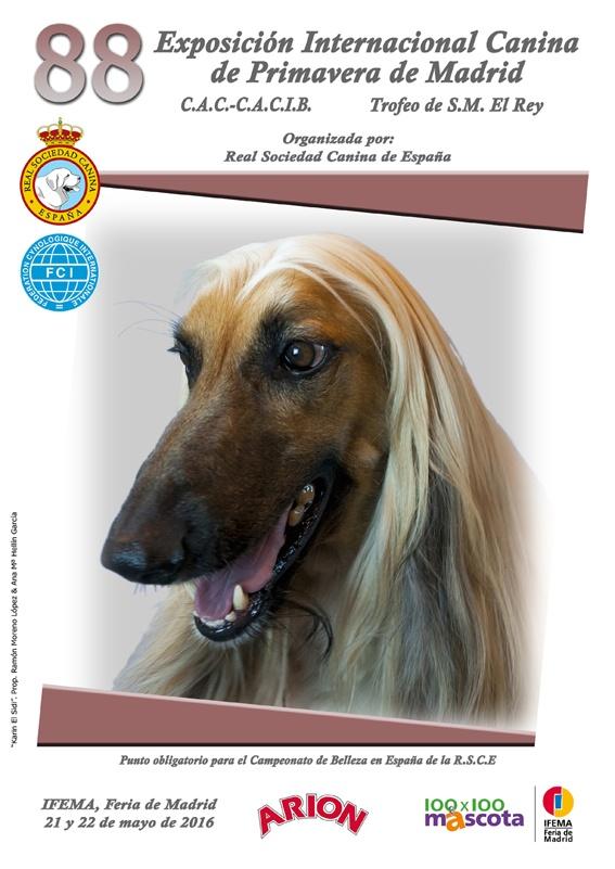 Perro de 6 Encantos Antiguo Tono Plata A897