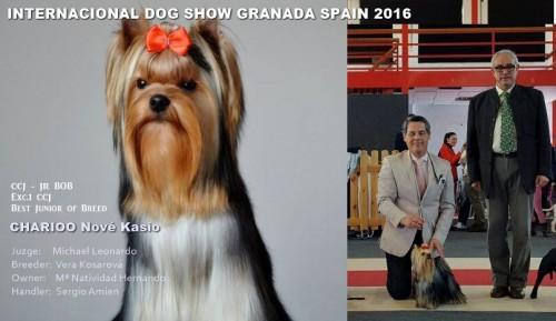Exposición Internacional Granada 2016