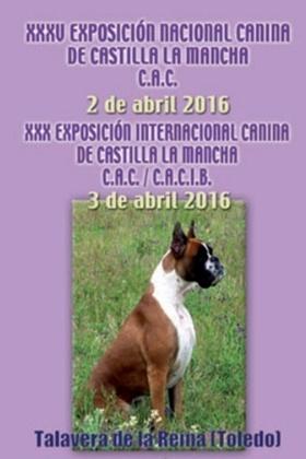 Exposiciones Nacional e Internacional Talavera 2016