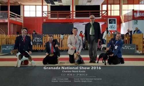 Exposición Nacional Granada 2016
