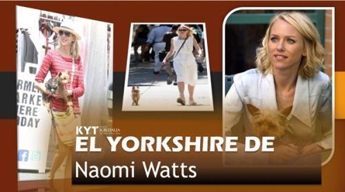el-yorkshire-de-naomi-watts