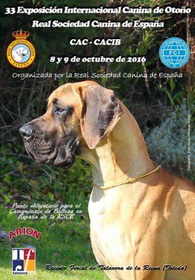 Exposición Internacional Canina de otoño Talavera 2016