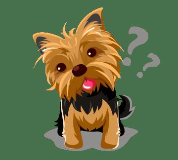 Desparasitación interna de cachorros
